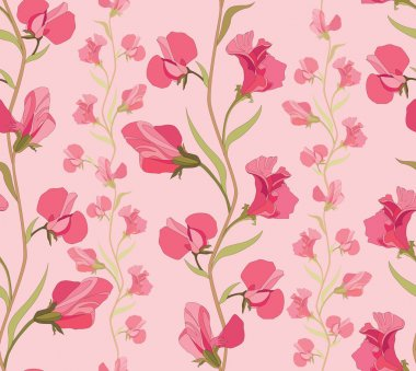 Seamless pattern with lilac and pink flowers sweet peas on pink background