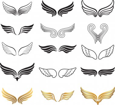 Wings. Elements for design.