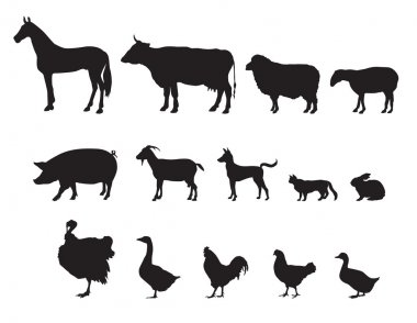 Farm animals vector set. Livestock.