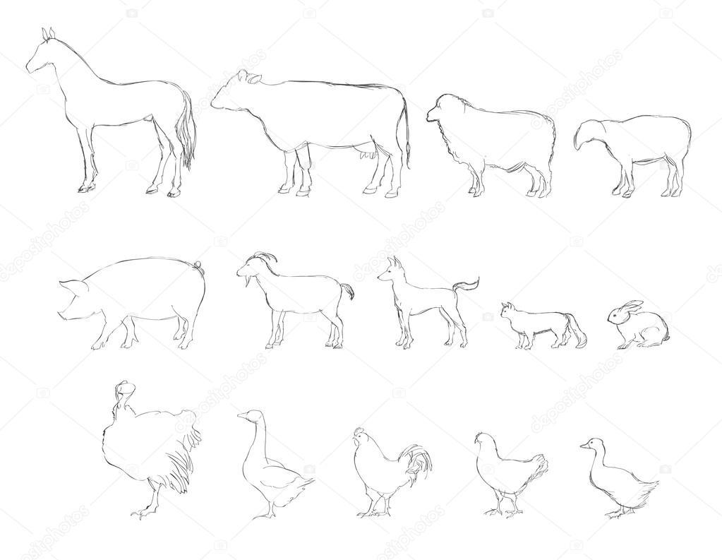 Line Art Farm Animals : Conjunto de desenho vetor animais fazenda pecuária