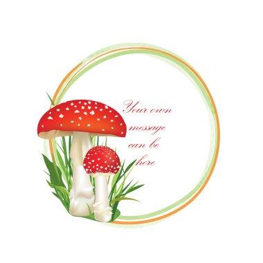 Mushrooms frame
