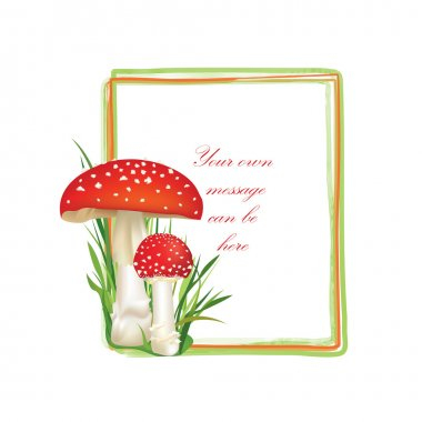 Mushrooms frame
