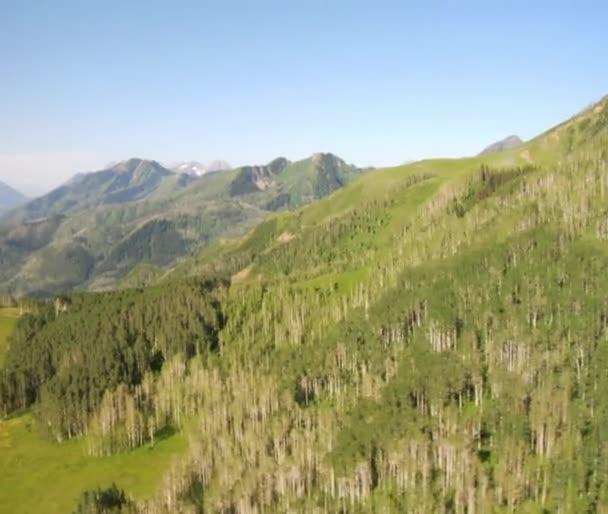 Letecký snímek zelených lesů a hor a louka