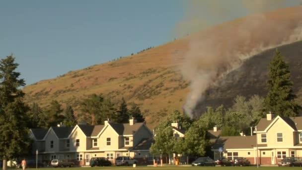 lesní oheň hoří v sousedství