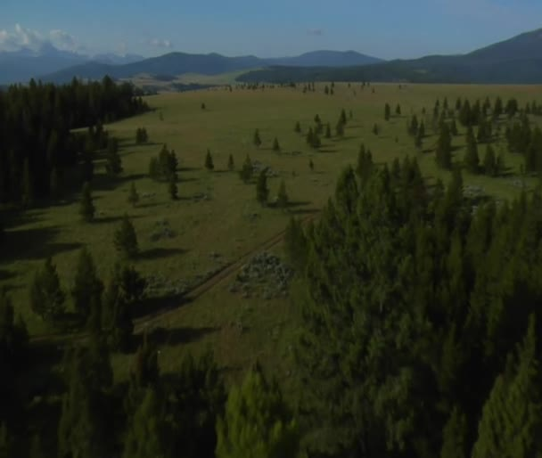 Letecký snímek otevřené pastvin, lesů a hor
