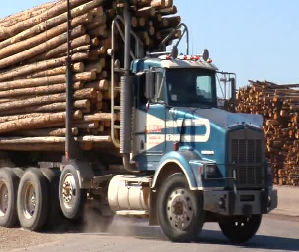 Double length log truck pulls into lumber mill