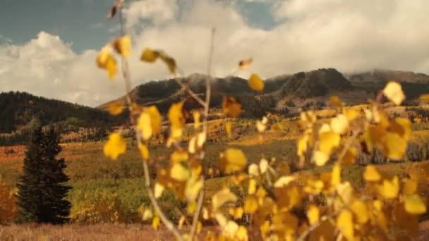stromy a horami na podzim