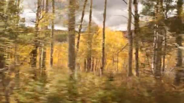 projížděl osika grove podzim