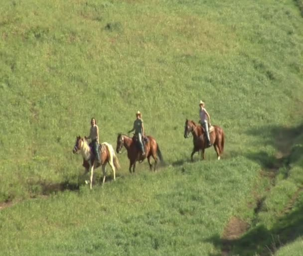 Three young women on horses gallop across green meadow