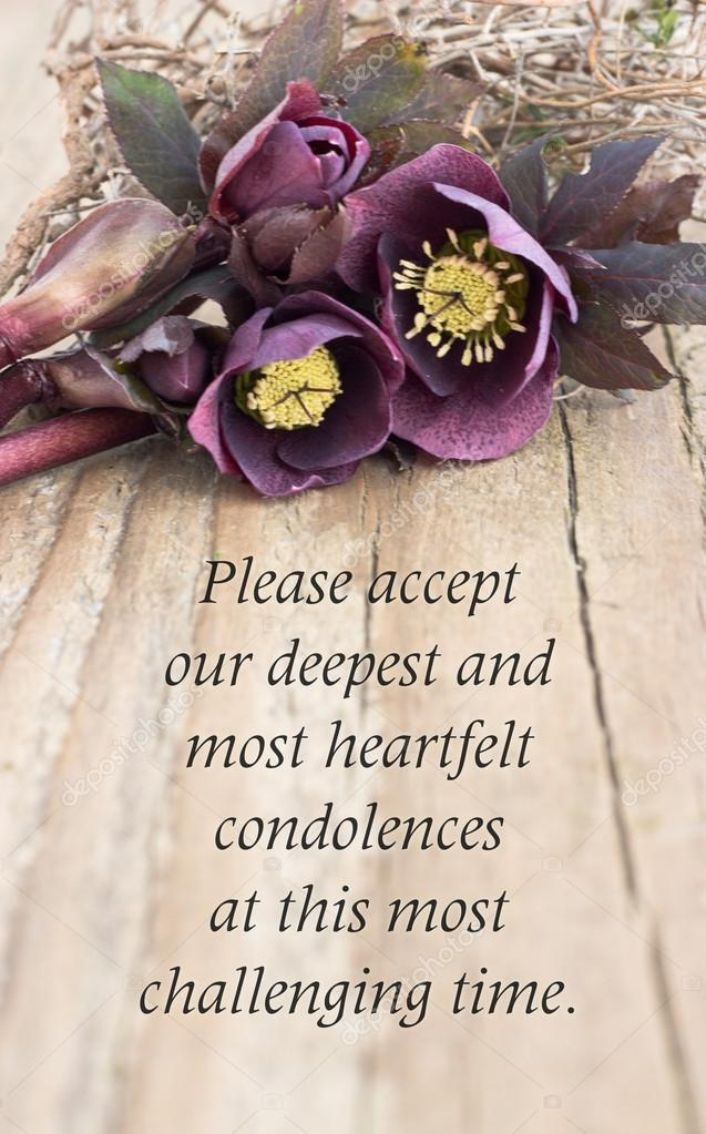 Zeer Condoleance kaart — Stockfoto © coramueller #42151877 #PB-96