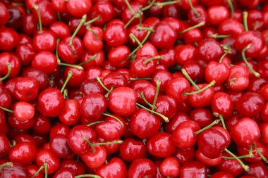 ripe red cherries with sticks background