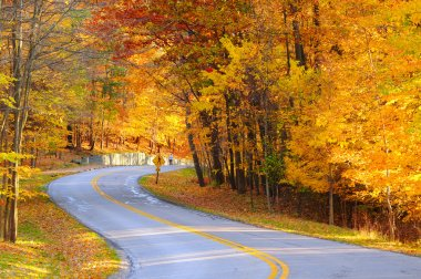Autumn road with hiker