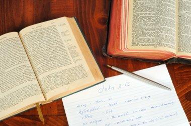 John 3:16 study