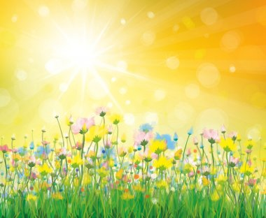 Vector of colorful flowers on sunny background.