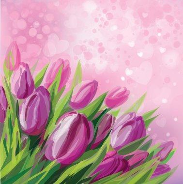 Vector of pink tulips.
