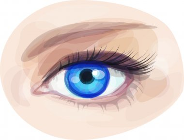 beautiful blue woman's eye.