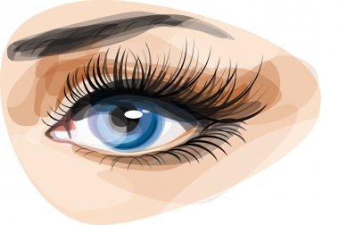 beautiful blue woman's eye.