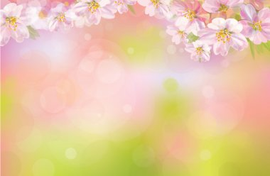 Vector of spring background.