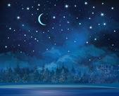 Vector noční zimní scény, obloha a lesní pozadí