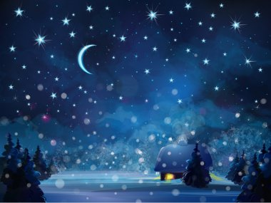 Vector winter night  landscape with house in forest.