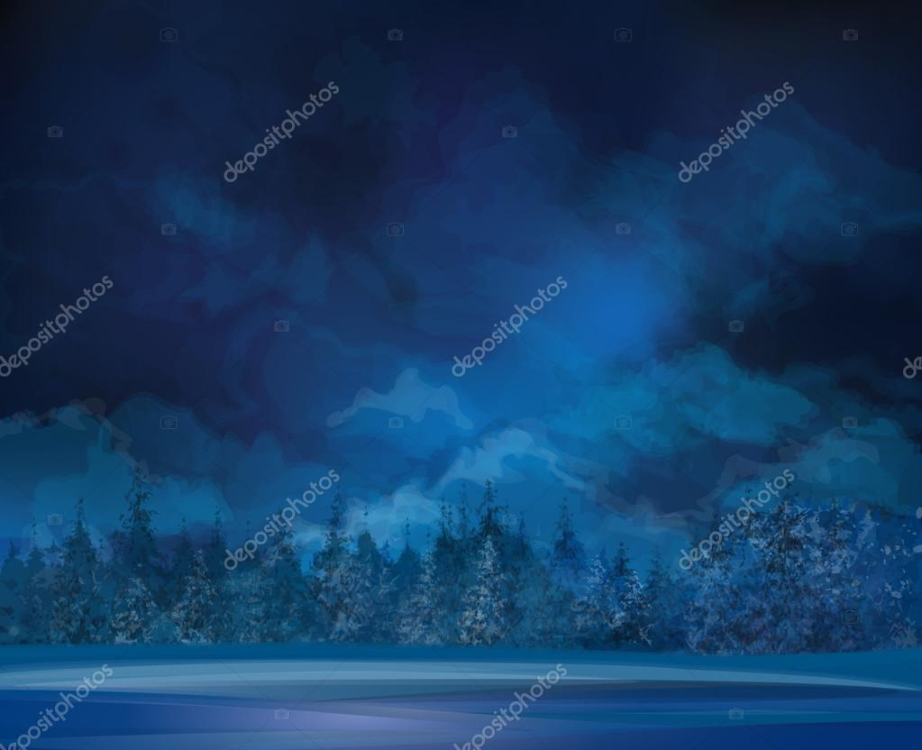 Night  winter scene and forest