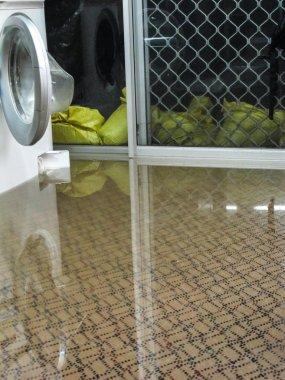 Flood Water on Carpet
