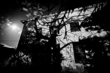 Abandoned old rustic hotel - horror movie scene