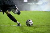 Fotografie fotbalový brankář