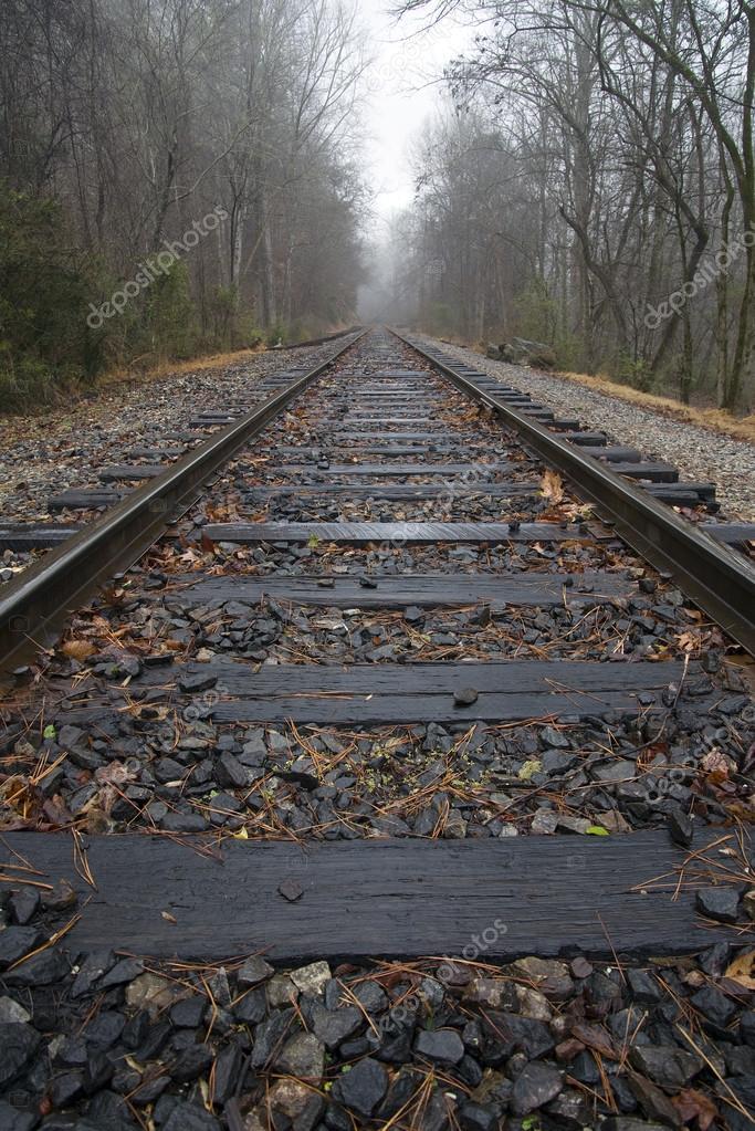 Train Tracks and Mist