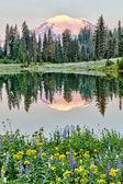 Fotografia mt rainier riflessione sul lago tipsoo allalba, washington
