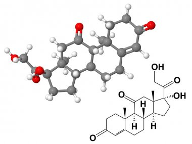 Cortisone molecule with chemical formula