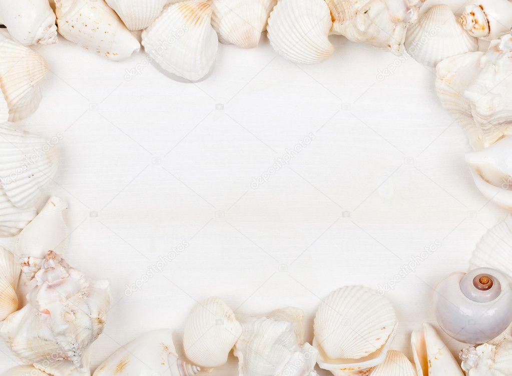 marco de concha — Foto de stock © shawn_hempel #18720585