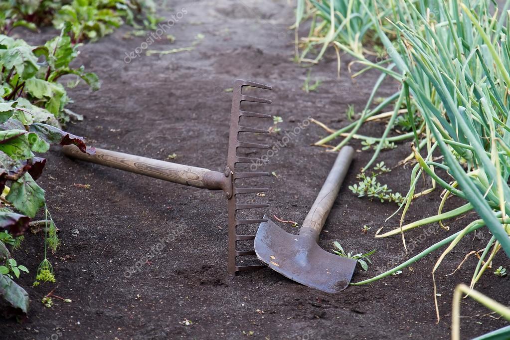 Gardening Tools In The Vegetable Garden Stock Photo C Pudiq