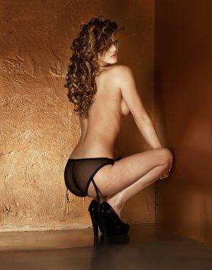 Sensual attractive naked lady posing.