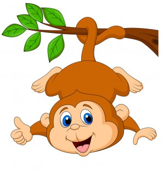 Cute monkey cartoon hanging with thumb up
