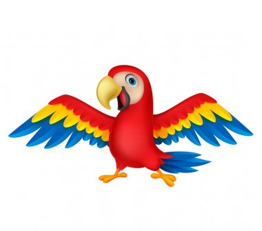 Cute macaw cartoon flying