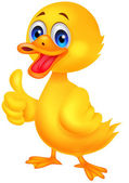 Fotografie Süßes Baby-Huhn mit Daumen
