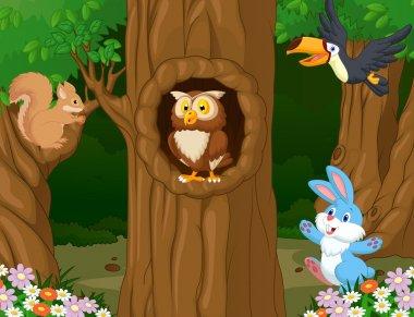 Animals in forest
