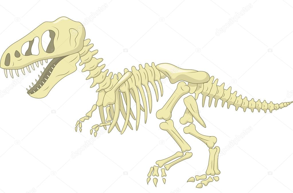 esqueleto del dinosaurio — Vector de stock © tigatelu #49598939