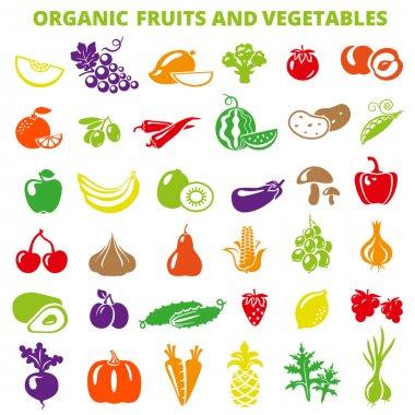 Color Fruits Vegetables