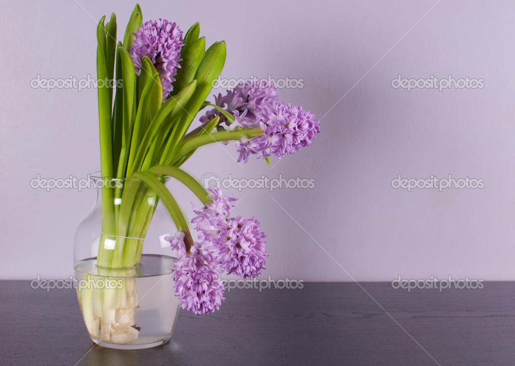Pareti Viola E Lilla : Interior design con parete lilla e viola fiore u foto stock