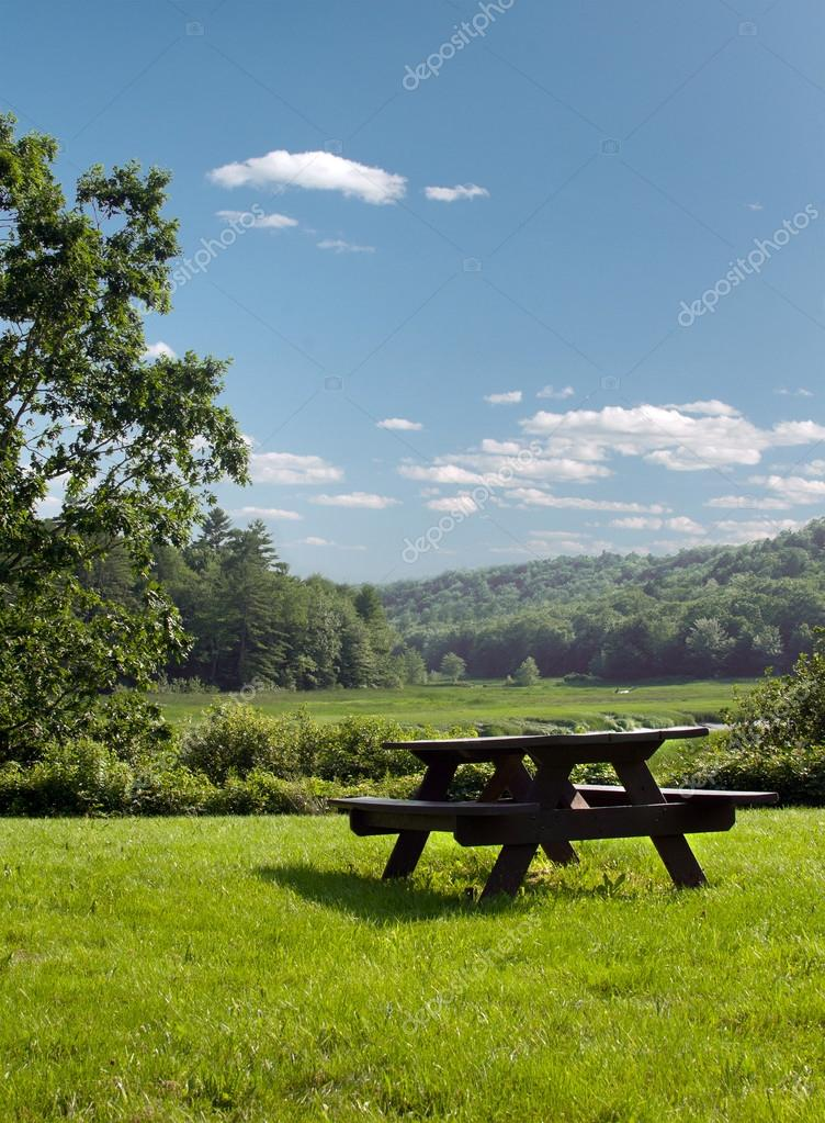 Wooden picnic table on green grass