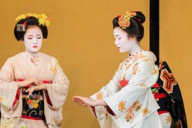 Maiko - Apprentice Geisha in Kyoto