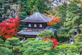 Fotografia Ginkakuji - il tempio del padiglione dargento a kyoto