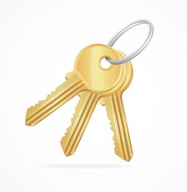 Vector Golden Keys bunch