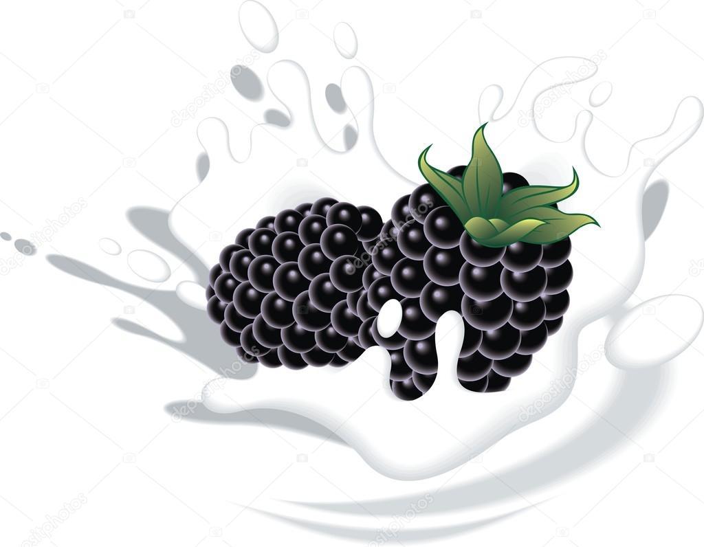 raspberries in yougurt or milk