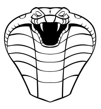 Vector illustration of cobra head