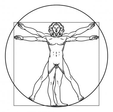 Vector illustration of vitruvian man
