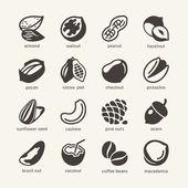 16 nuts - web ikonok gyűjtemény