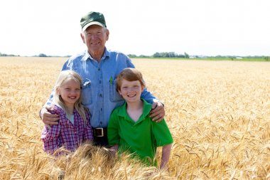 Grandfather farmer stands with grandchildren in wheat field